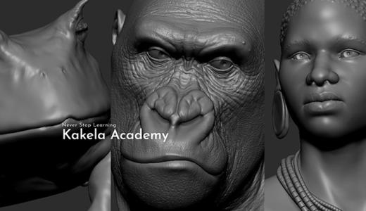 少数オンラインスクールKakela AcademyでZbrush講座が開催されます!